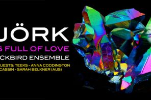 Blackbird Ensemble announces a new show in honour of BJÖRK